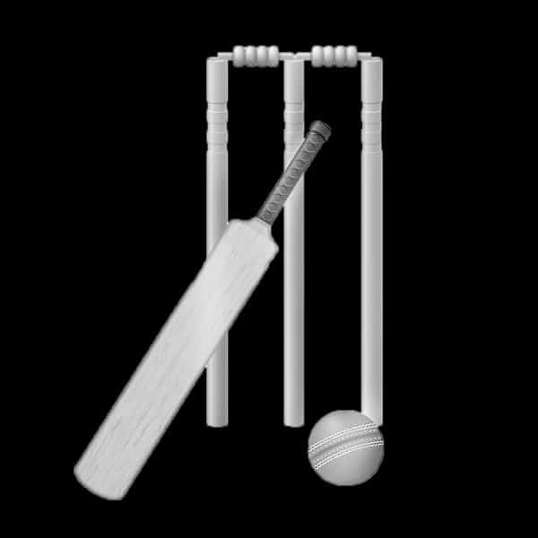 Black and white cricket bat and ball