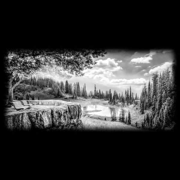 Black and white lake view
